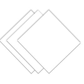 CARTULINA INDEX BLANCA 25.5*30.5